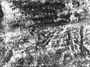 image001(27)